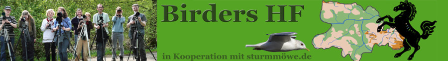Birders HF Jahresliste NRW 2020 Edition